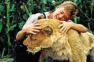 Film: Löwen aus zweiter Hand